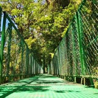 Eine von vielen Hängebrücken