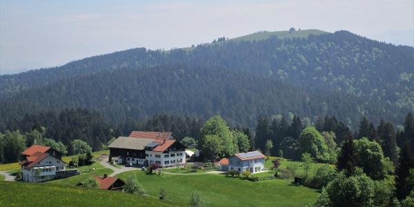 Blick über die Parzelle Hub auf den 3. Gipfel, den Hirschberg