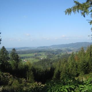Blick vom Kugel-Alp-Weg