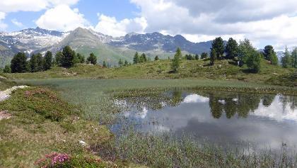 Der kleine See am Hirschbichl