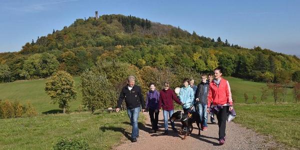 Wanderer am Geisingberg
