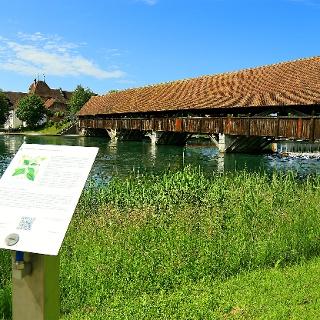 Wangen an der Aare mit gedeckter Holzbrücke.