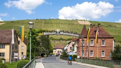 Blick auf die Weinberge Markelsheim