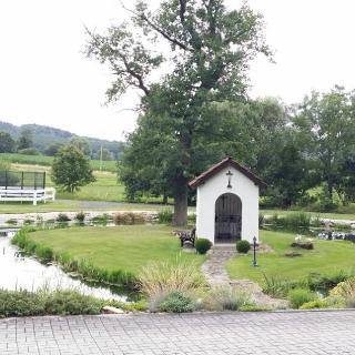 Teich bei Pension St. Leonhard