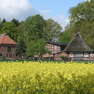 Blick auf den Baalshof. Hier wurde vor Jahren die Kinder-Serie Süderhof für den NDR gedreht_