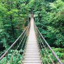 Hängebrücke Waltskulpturenweg