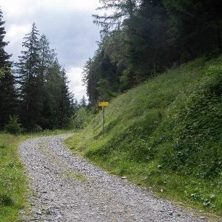 Abzweig zu steilen Steig zur Bergeralm