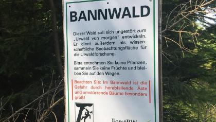 Bannwald: nicht verwirren lassen, der weg geht kurz danach als kaum sichtbarer pfad hoch, alles legal😉