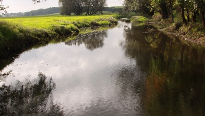 ein Seitenarm der Oder