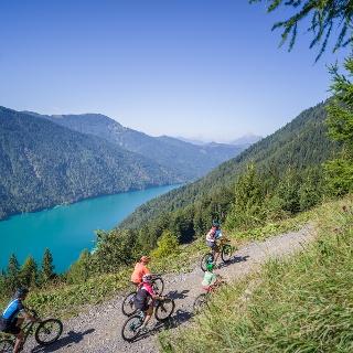 BERGFEX Bike Koro ka - Hoja & Gorsko kolesarstvo