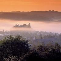 Vulkaneifel-Pfad: Vulkangipfel-Pfad_Daun im Nebel