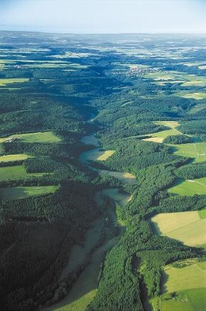 Vulkaneifel-Pfad: Hinterbüsch-Pfad_Maarlandschaft Vulkaneifel (Foto: Claudia Endres, Quelle: Eifel Tourismus GmbH)