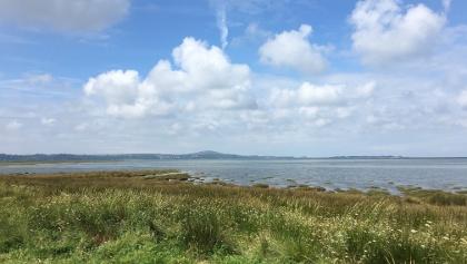 Llanrhidian Salt Marsh at high tide.
