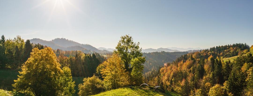 Wiesen und Wälder, Sternenberg