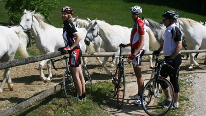 Radfahren bei den Lipizzanern