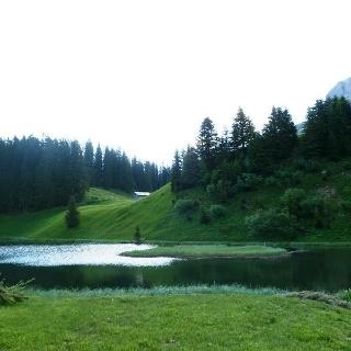 Seebachsee, Warth