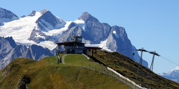 Alpen tower.