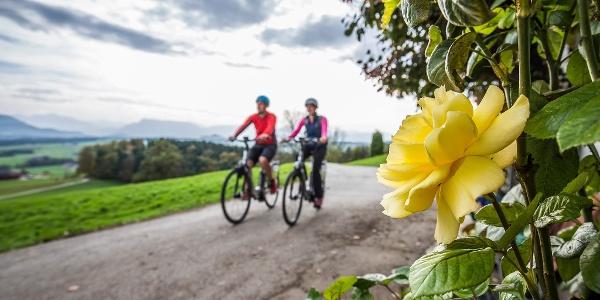 Radfahren auf dem Bodensee Königssee Radweg