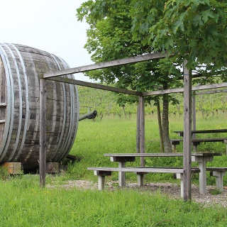 Trasadingen, Grillplatz Weinwanderweg