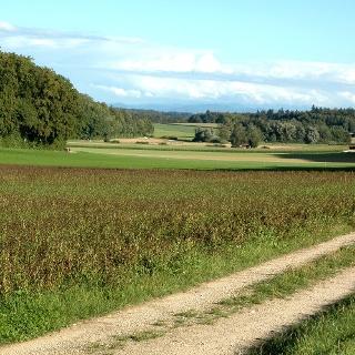 Eschheimertal
