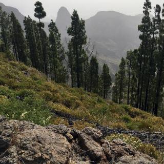 Blick zum Roque de Agando
