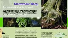 Stemweder Berg - Waldlehrpfad