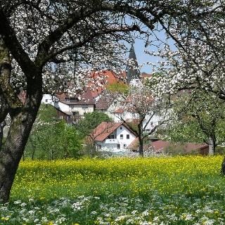 Idyllisches Hattenhofen