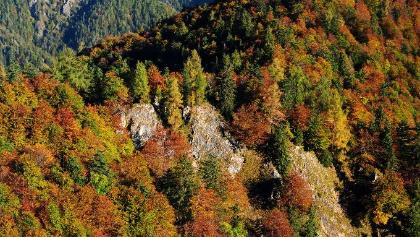 Etappe_02_Hintergebirge_NPK Kalkalpen_©Sieghartsleitner