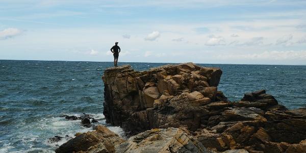 Felsen an der Küste von Hovs Hallar