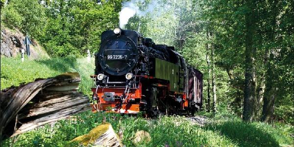 Selketalbahn der Harzer Schmalspurbahnen