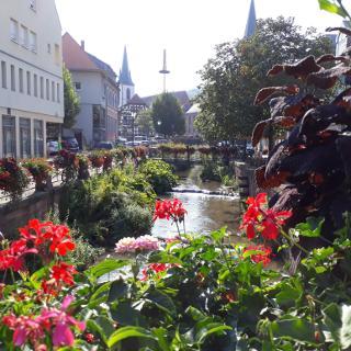 Walzbach in Weingarten (Baden)