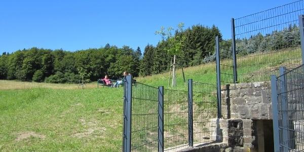 Lieserquelle_Lieserpfad: Etappe 1: Boxberg-Daun