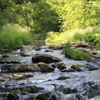 Flussverlauf Lieser_Lieserpfad: Etappe 4: Wittlich-Lieser