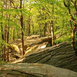 Felsenmeer an der Kalmit bei Maikammer