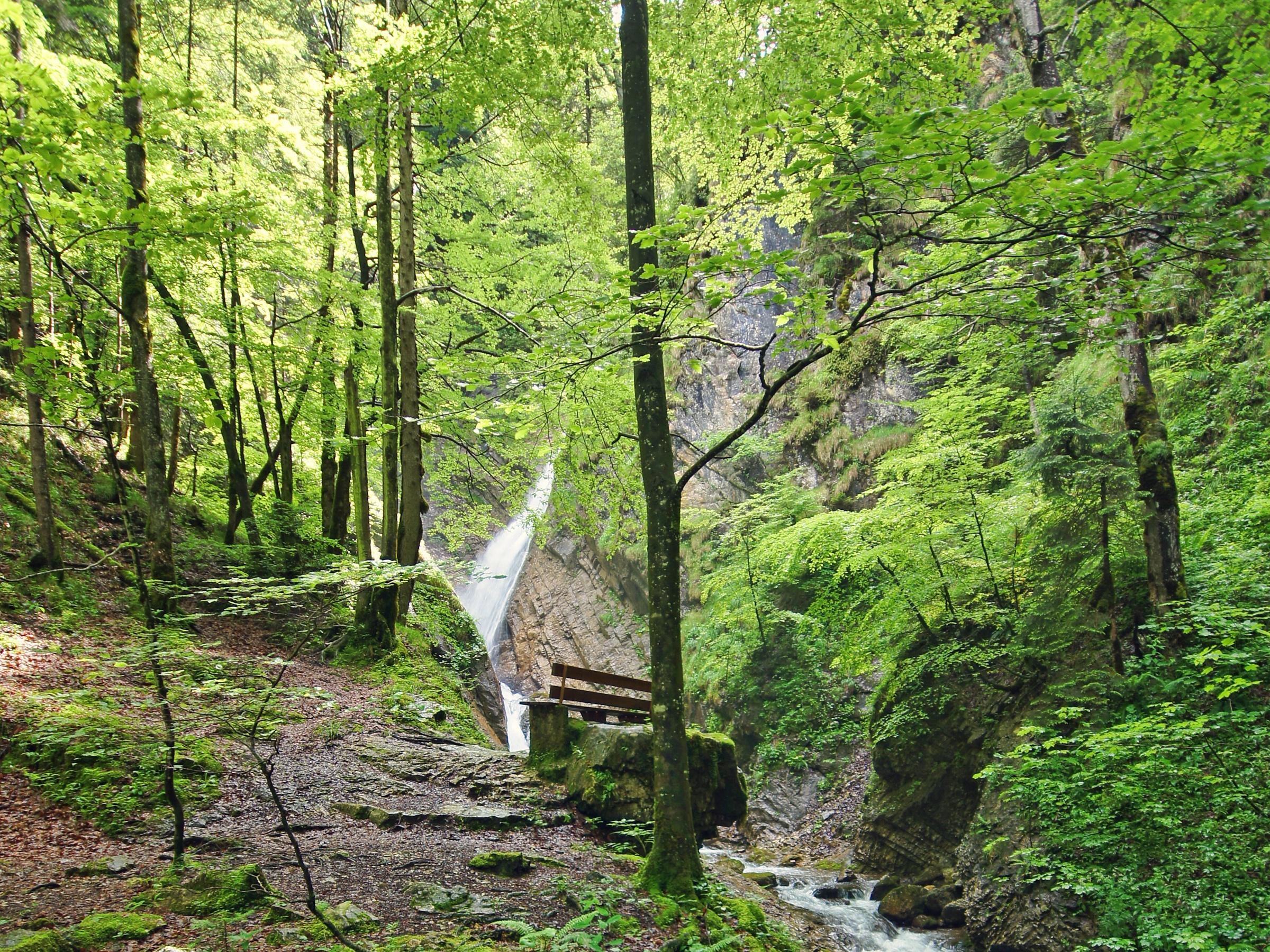 Wasserfall in Berg