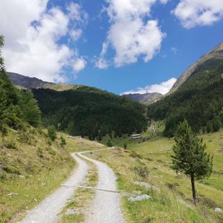 Weg zur Kortscher Alm im Schlandrauner Tal