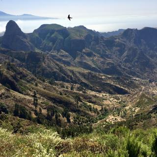 Blick auf den Roque Agando und auf den Teide