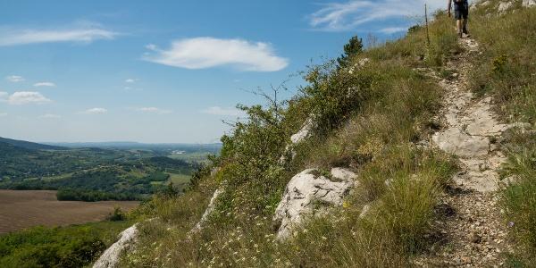 Pred vrcholom Hegyes-kő
