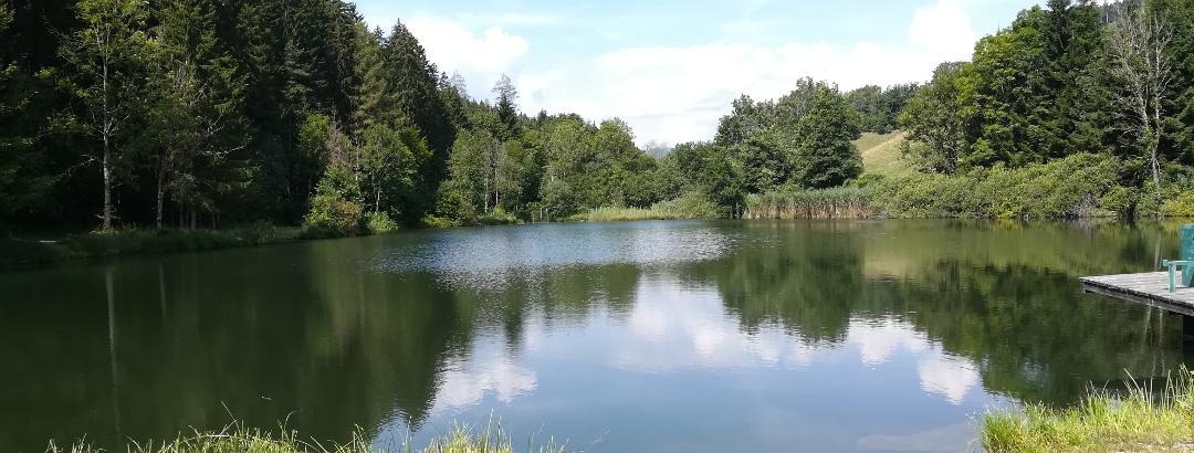 Blick nach Westen auf den mittleren St. Urbaner See