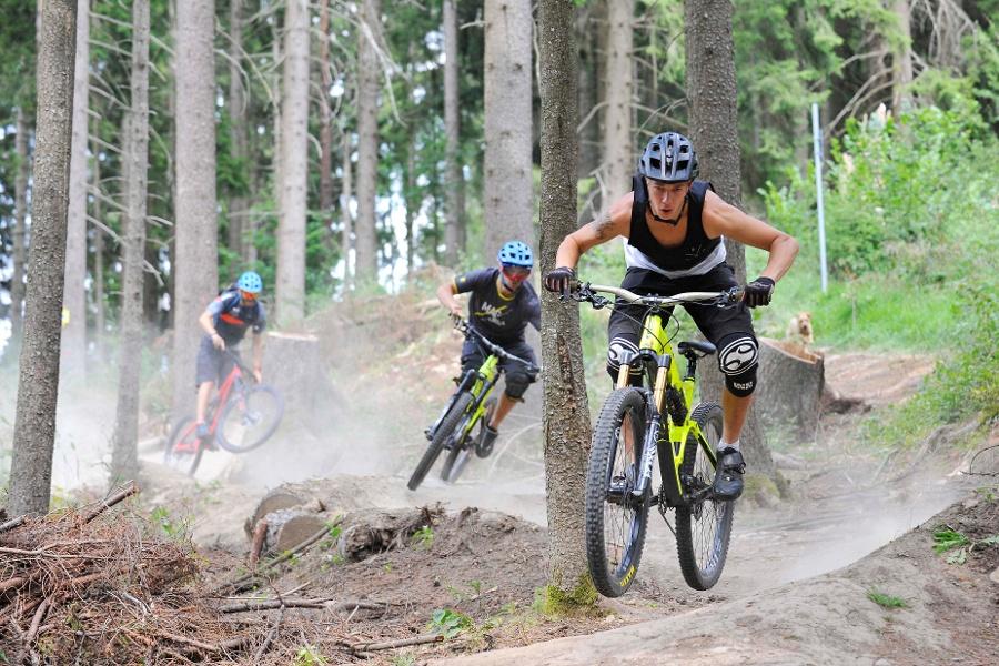 Schellenberg-Trail