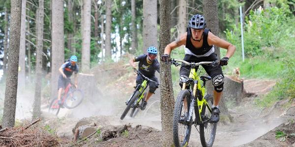 Ein Paradies für ambitionierte Biker – der Schellenberg-Trail