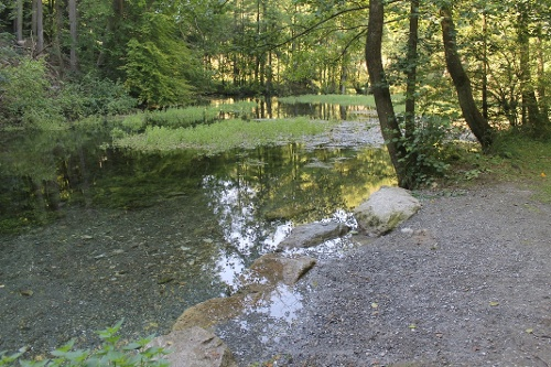 13. Waldrouten-Etappe Alme - Marsberg