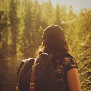 Wanderer im Wald