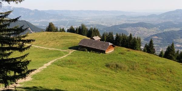 Die Bazoraalpe mit Blick ins Rheintal.
