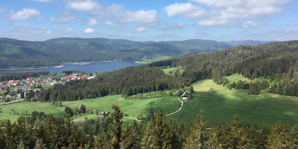 Aussicht vom Riesenbühlturm Schluchsee Feldberg