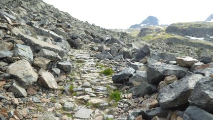 der Weg ca. 700m vor dem Scalettapass