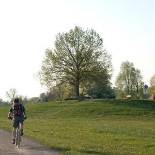 Radweg am Altmühlsee