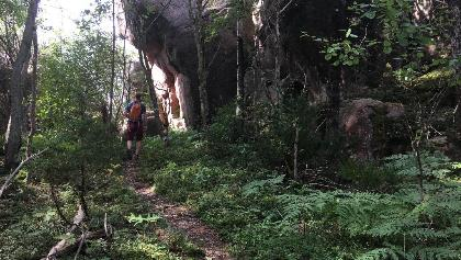 Rocky woodland trails.