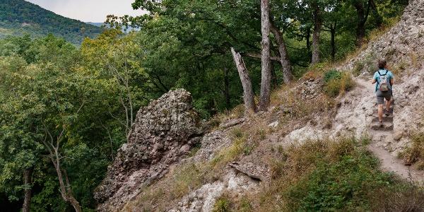 Sziklába vájt lépcső a Spartacus-vadászösvényen