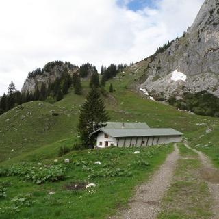 Hintere Scharnitzalm 1420 m